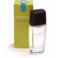 Cereus No 15