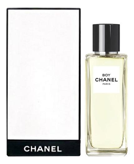 Chanel Boy Chanel