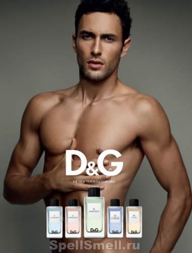 Dolce & Gabbana D and G Anthology L Amoureaux 6