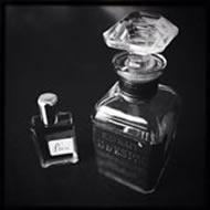 The Rising Phoenix Perfumery P eau Sud