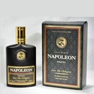 Via Paris Group Napoleon Strateg